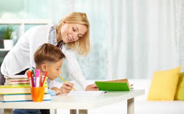 professor particular - Trabalhar em Casa como Professor Particular!
